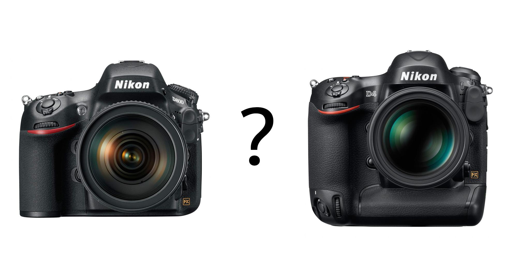 Nikon-D800-vs-Nikon-D4