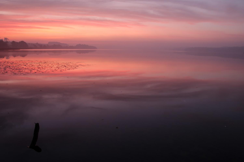 Et klassisk landskabsbillede. Smuk solopgang, langsom lukker og kameraet på stativ. Fussingø ved Randers. Grej: Nikon D300s + Tamron 17-35 f/2.8-4. Indstillinger: 2 sek., f/16, ISO-100, 17mm.