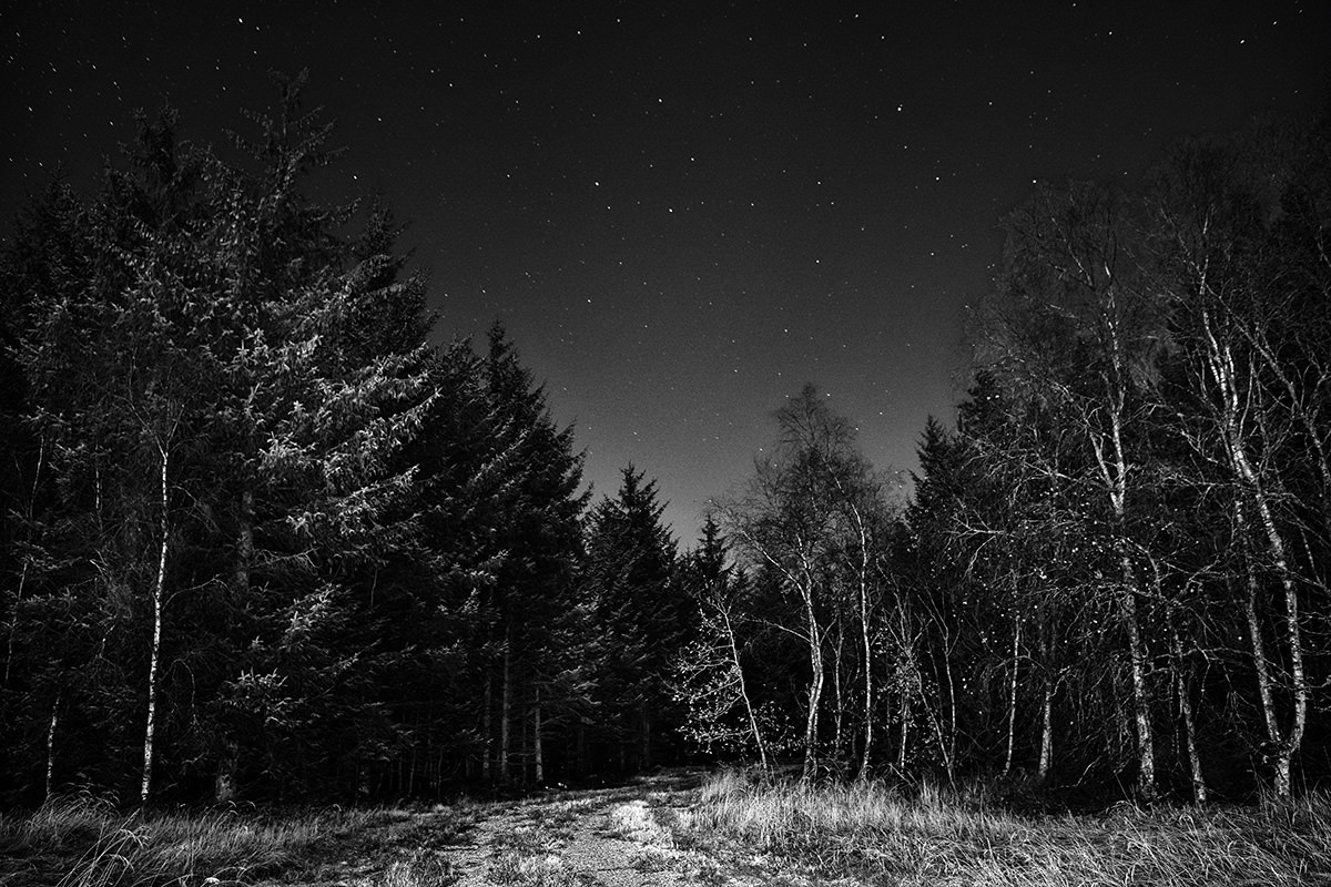 Mørkeskabet ses ikke med det blotte øje. Kun med et veludviklet nattesyn, som et rovdyr, eller med lang lukkertid på kameraet.